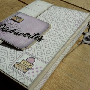 Tutoriel mini-album Découvertes Couleurs-en-Folie scrap scrapbooking atelier crop encres tampons Scrap-Plaisir Pepsy-Design Basicolor-Hivernal mini-album photos lille marcq-en-baroeul tuto tutoriel