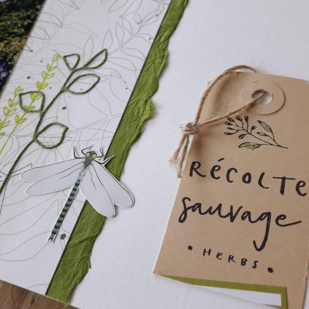 Kit mini-album Côté Jardin couleurs-en-folie scrap scrapbook scrapbooking kit mini-album photos nature fleurs jardin famille amis fêtes mariage gel press gelli-plate atelier marcq-en-baroeul isabelle-lafolie lin reliure papier-népalais