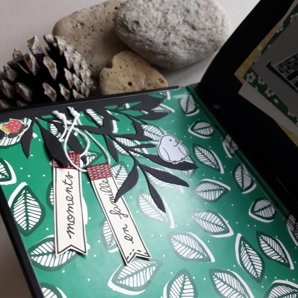 Kit mini-album Collection d'images scrap scrapbooking scrapbook mini-album kit diy couleurs-en-folie isabelle-lafolie tampons stamp-addict famille vacances atelier ateliers