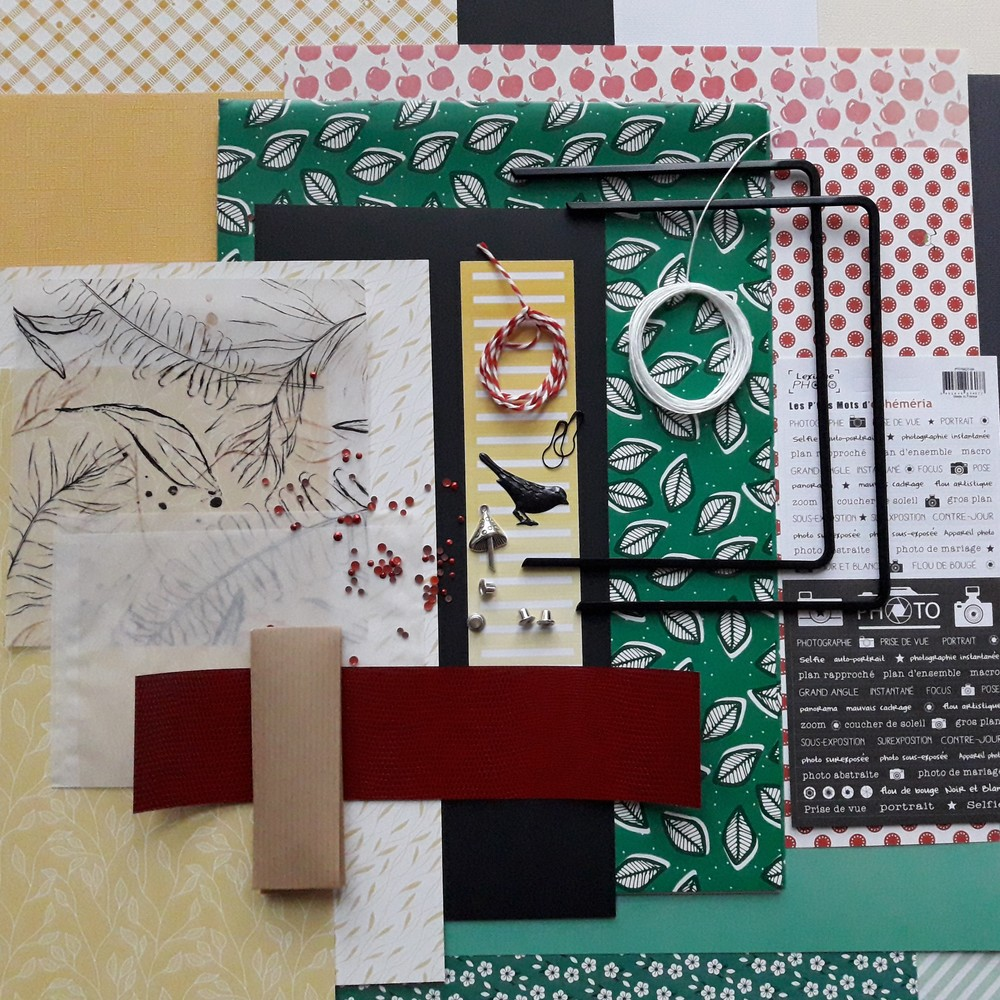Kit mini-album Collection d'images scrap scrapbooking scrapbook mini-album kit diy couleurs-en-folie isabelle-lafolie tampons stamp-addict famille vacances atelier ateliers
